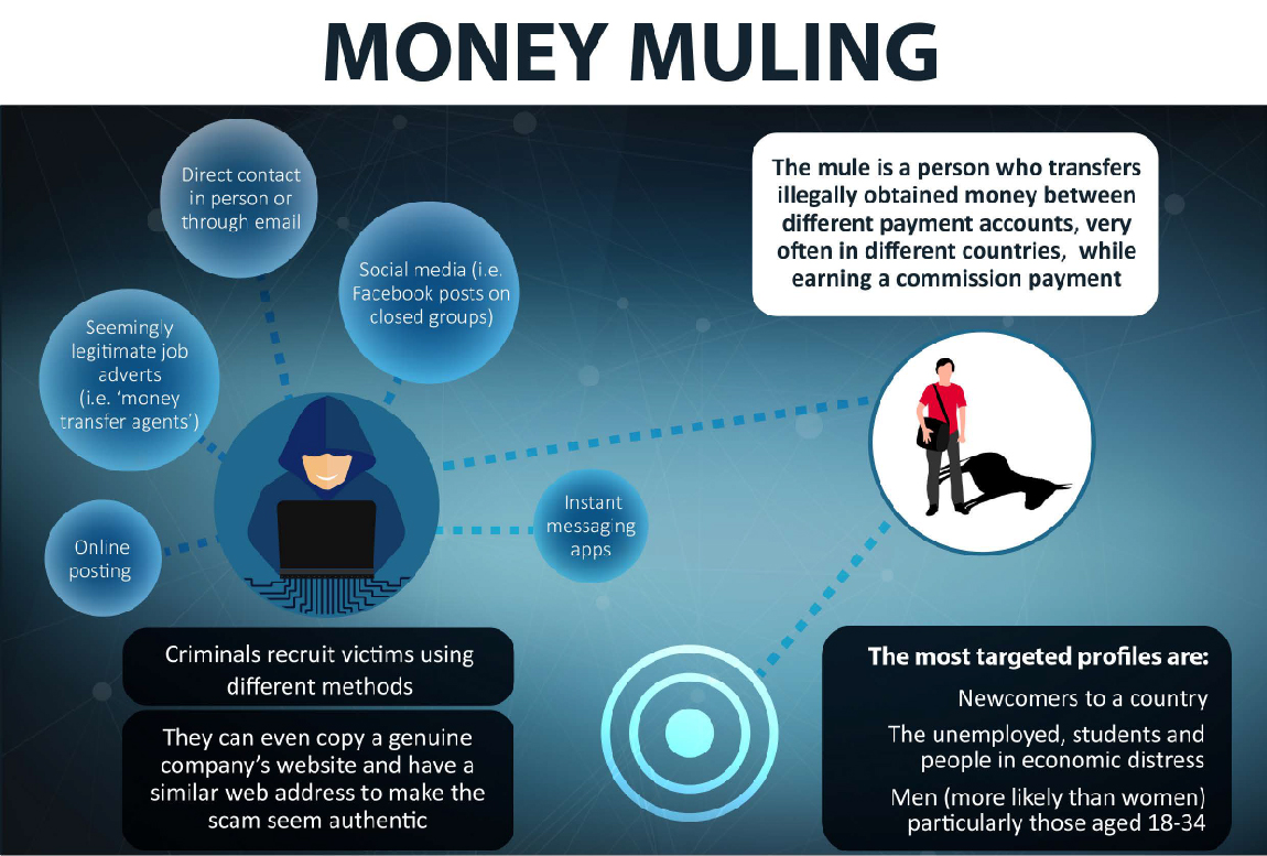 What is money muling? - EBF