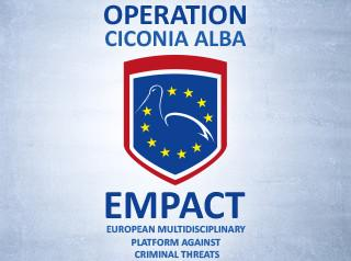 Operation Ciconia alba picture