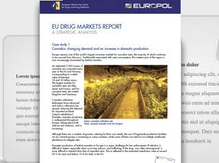 EU drug markets report - Case studies cover