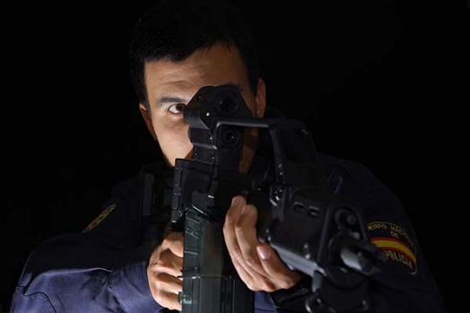 Customs Surveillance Directorate (Spain)